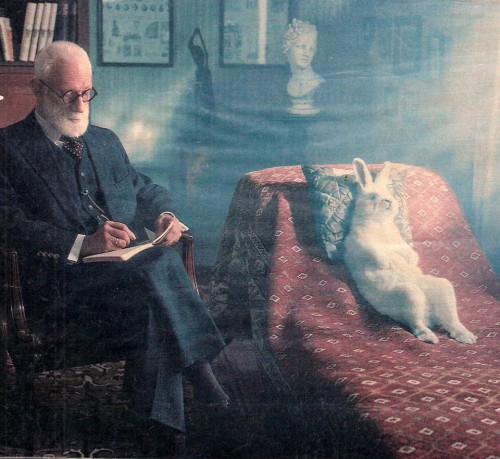 Freud & the Rabbit